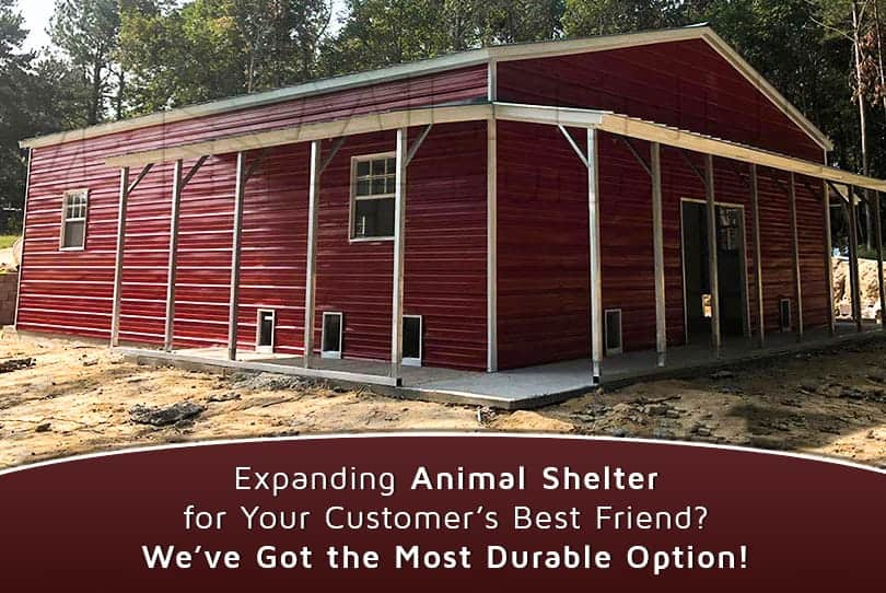 Expanding Animal Shelter for Your Customer's Best Friend? We've Got the Most Durable Option!