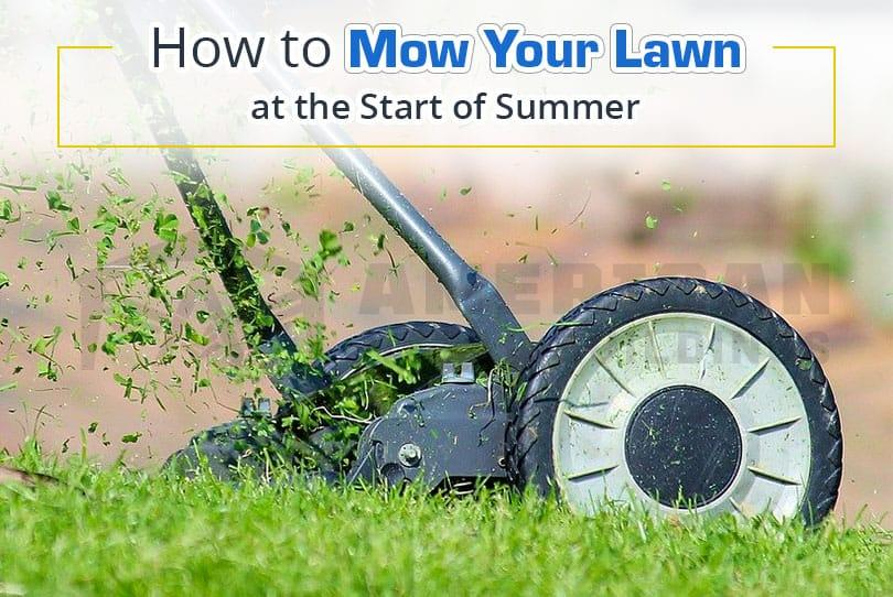 How to Mow Your Lawn at the Start of Summer
